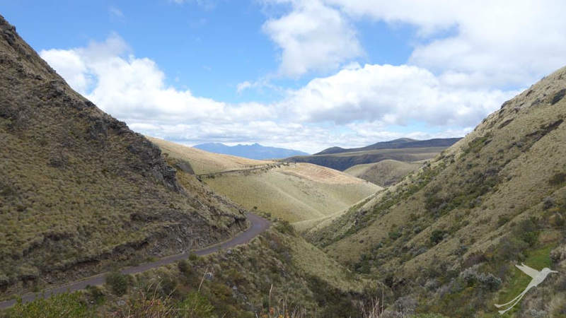 A cycling tour in the Ecuadorian Andes leads through amazing paramo landscape.