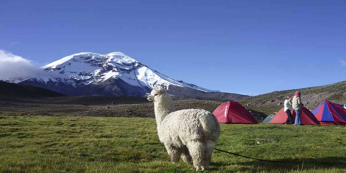 You will hike through beautiful Andean landscape during the Condor Trek