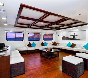 Relax at in the luxury lounge of Cormorant