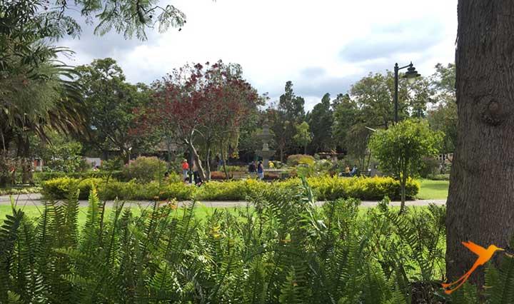 Cumbaya Park
