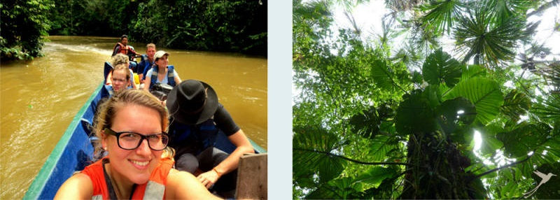 While staying at the Cuyabeno Lodge you can go on excursions in the rain forest.