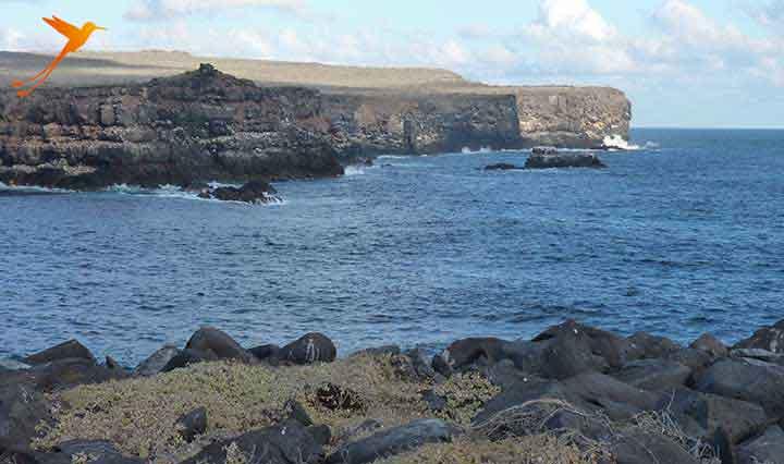galapagos island española cliffs