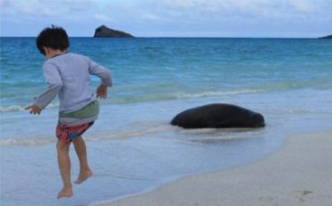 Kids will be happy playing on the beaches of the Galapagos Islands
