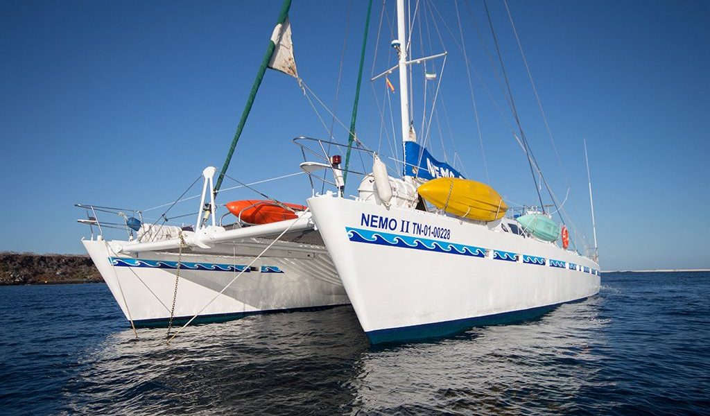 A cruise with catamaran Nemo II takes you to the dieferent islands of the Galapagos.