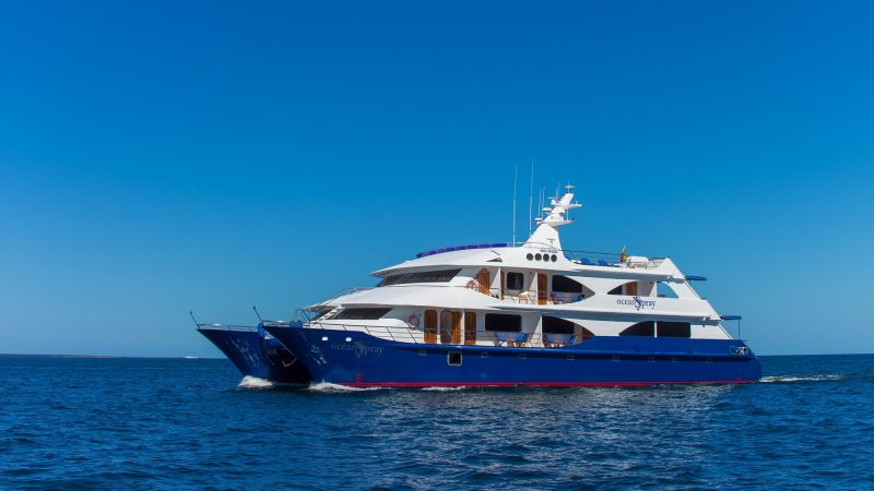 Discover the Galapagos Islands on cruises with the luxury yacht Ocean Spray