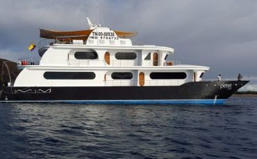 The Petrel is a luxury Yacht for Galapagos cruises