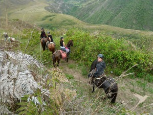 Horseback riding in the Pululahua crater is a real adventure