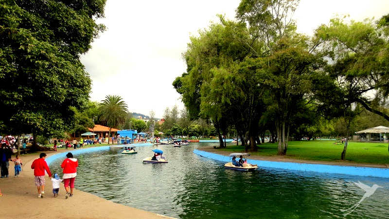 Next to the botanical garden of quito you can find canals and ponds that can be navigated by boats.