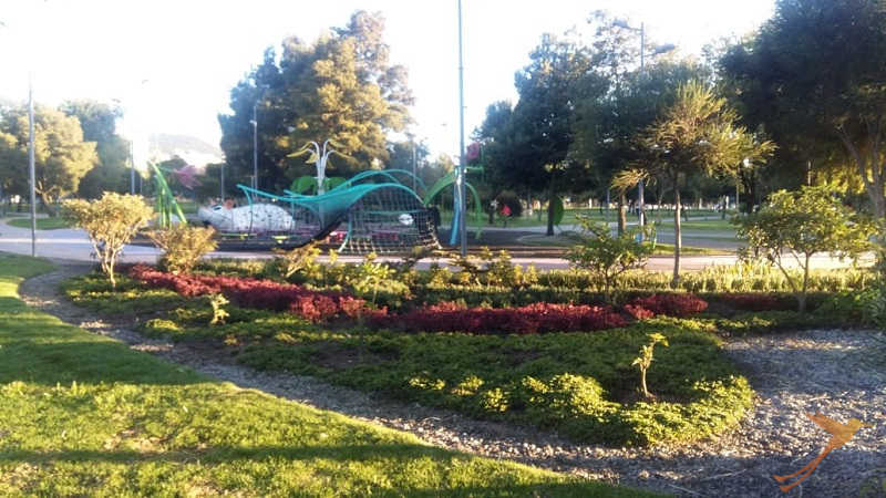 In the carolina park in quito you can find recreational areas and areas to be active.