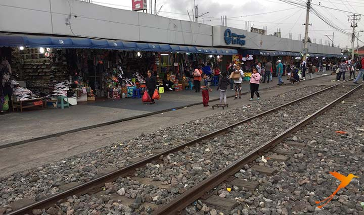 vias train to salinas in front of the market of ibarra